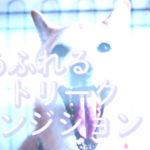 【AfterEffects】簡単! 光あふれる画面遷移「ライトリークトランジション」の作り方