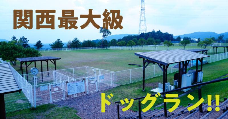 関西最大級のドッグラン「ドギーパーク滋賀」に行ってきた | スタジオ・ボウズ