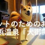 いたれりつくせりで超安心! 柴犬ほかペットと快適に過ごせるホテル・白浜温泉の「犬御殿」
