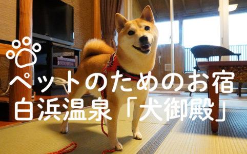 いたれりつくせりで超安心! 柴犬ほかペットと一緒に泊まれるホテル「犬御殿」|スタジオ・ボウズ